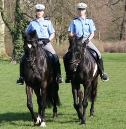 Polizei Hessen Die Polizeireiterstaffel Hessen